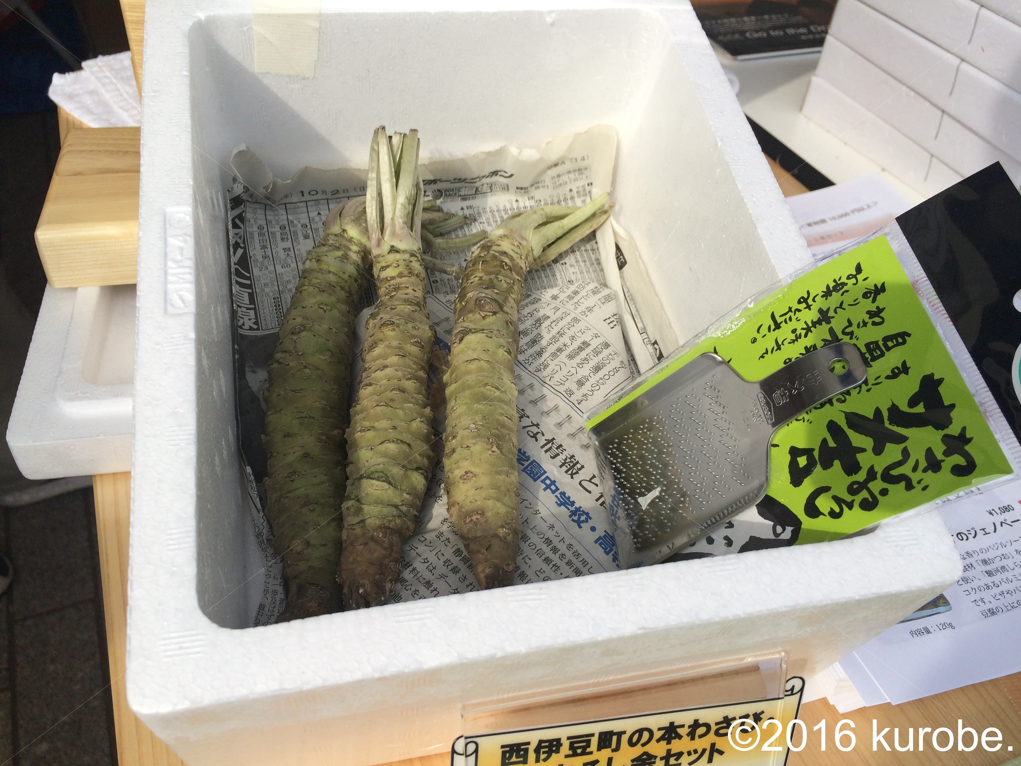 静岡県西伊豆町 ふるさと納税