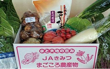 千葉県富津市 ふるさと納税,季節の採れたて野菜 おまかせセット,